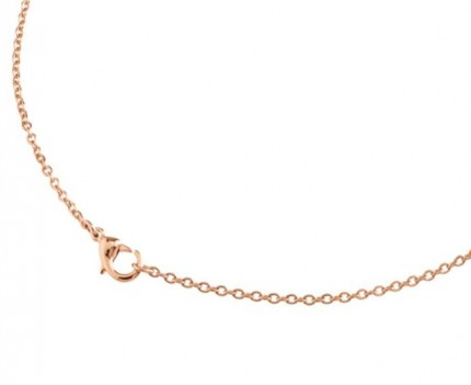 Boccia Collier Titan Ankerkette Roségold 08027-0355